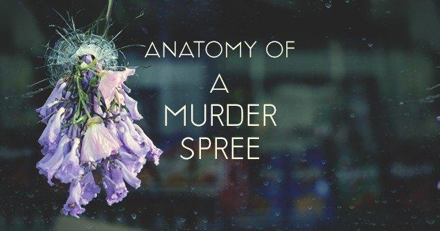 Anatomy-of-a-spree-slider
