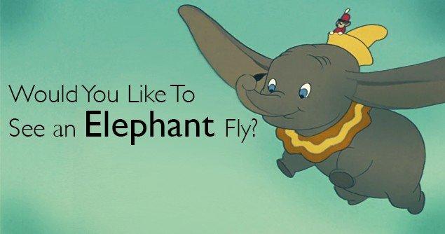 Dumbo-Slider