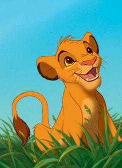 Simba from lion king