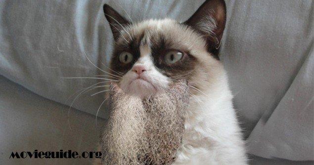 Grumpy-Cat-Beards